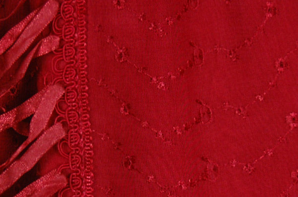 Handkerchief Hem Embroidered Skirt in Ruby Red