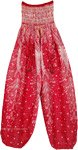 Blossom Red Dance Workout Yoga Harem Pants
