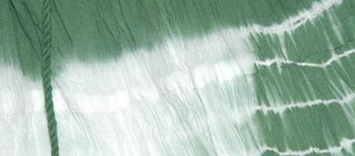 Axolotl Green Summer Short Skirt