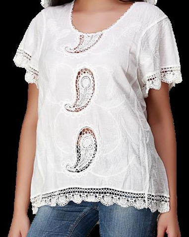 Self Embroidered Cutwork White Blouse